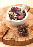 Dried Herbs and flowers Royalty Free Stock Images