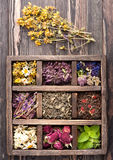 Dried Herbs and flowers Royalty Free Stock Photo