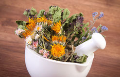 Dried herbs and flowers in white mortar, herbalism, decoration Royalty Free Stock Photography