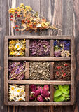 Dried herbs and flowers in a wooden box Royalty Free Stock Photos