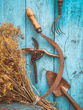 Dried herbs and garden equipment Stock Photos