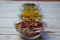 Dried herbs in glass bowls. royalty free stock photography