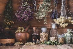 Dried herbs hanging over bottles of tinctures and oils stock image