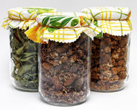 Dried herbs in jars Stock Photos