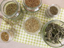 Dried herbs in jars Royalty Free Stock Images