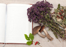 Dried herbs and notebook Stock Images