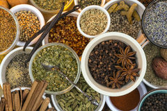 Dried Herbs and Spices. A selection of dried herbs and spices. Use in cooking to add seasoning and flavor to a meal stock photography