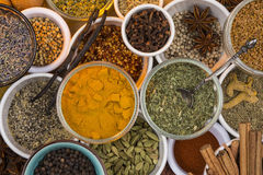 Dried Herbs and Spices. A selection of dried herbs and spices. Use in cooking to add seasoning and flavor to a meal royalty free stock photos