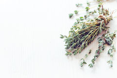 Dried herbs thyme Stock Images
