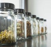 Dried herbs Stock Image