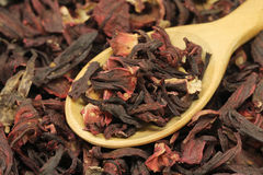 Dried Hibiscus buds in wooden spoon Stock Image