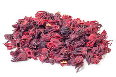 Dried Hibiscus Flowers Royalty Free Stock Images