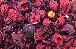 Free Dried Hibiscus Flowers Stock Photography - 29292872