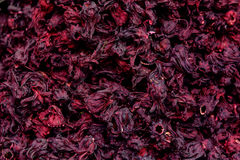 Dried Hibiscus Leaves Texture Stock Photography