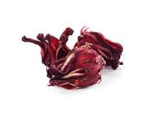 Dried hibiscus sabdariffa or roselle fruits Royalty Free Stock Photo