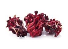 Dried hibiscus sabdariffa or roselle fruits Royalty Free Stock Image