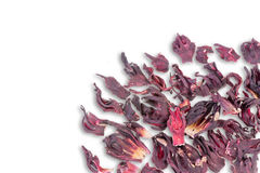 Dried hibiscus tea leaves scattered on white Royalty Free Stock Photography