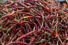 Dried hot chili at Mexican market Royalty Free Stock Photography