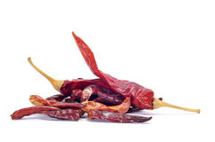 Dried hot chili peppers Royalty Free Stock Photo