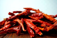 Dried hot chilies Stock Images