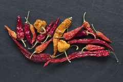 Dried Hot Peppers Royalty Free Stock Photo
