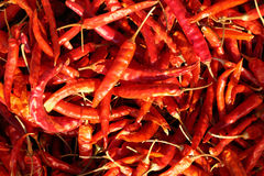 Dried hot red pepper Royalty Free Stock Photo
