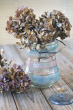 Dried hydrangea Stock Photo