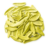 Dried italian pasta with spinach flavour. Royalty Free Stock Photography