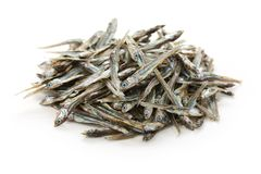 Dried japanese anchovies Stock Images