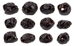 Dried jujube Stock Photography