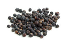 Dried Juniper berries Stock Image