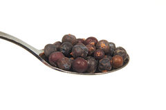 Dried juniper berries on a teaspoon Royalty Free Stock Photography