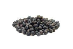 Dried juniper berries Royalty Free Stock Image