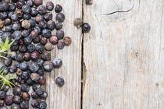 Dried Juniper Berries Stock Image