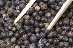 Dried juniper berries Royalty Free Stock Photography