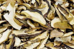 Dried king bolete Royalty Free Stock Images