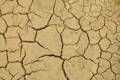 Dried lakebed. A polluted lake bed drying out Royalty Free Stock Photos