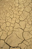 Dried lakebed. A polluted lake bed drying out Royalty Free Stock Photography