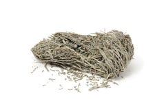 Dried Laminaria (Kelp) Royalty Free Stock Image