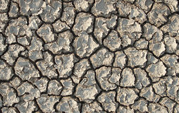 Dried land Royalty Free Stock Image