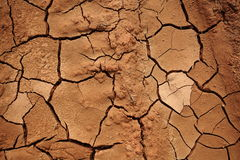 Dried land Stock Photography