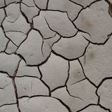 Dried land. Details of white dried land Royalty Free Stock Photo