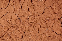Dried land Stock Photo
