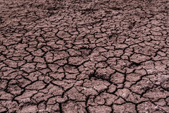Dried land background Stock Image