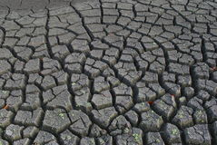 Dried land, dead earth, cracks Stock Image