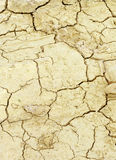 Dried land texture Royalty Free Stock Image