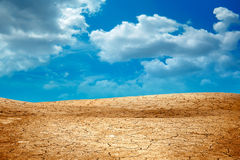 Dried landscape Royalty Free Stock Image