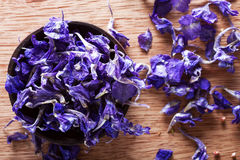 Dried larkspur petals Stock Image