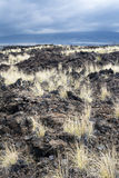 Dried lava flow Stock Images