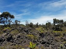 Dried Lava and New Vegetation Growth on a Partly Cloudy Day Royalty Free Stock Image